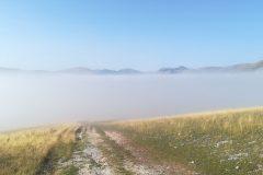 Coltre di nebbia