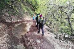 Strada per la cascata