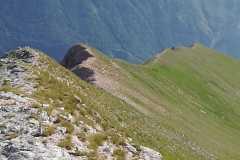 Immagine di cresta
