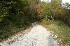La sterrata di rientro - Sentiero Cai N° 323A