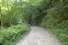 Strade battute per escursionisti e boscaioli