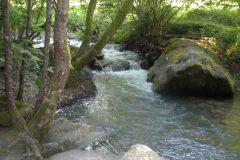 Scivoli continui lungo il Rio Volpara
