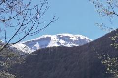 Monte Focalone